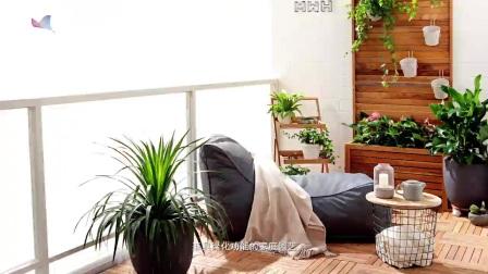 休闲养生还能绿化环境, 家庭园艺你体验了吗?
