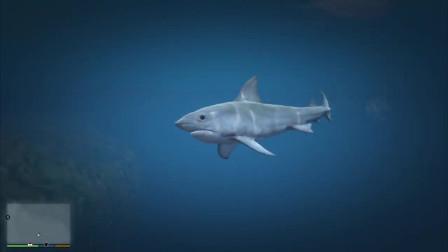 GTA:2002-2019年历代GTA作品的鲨鱼变化