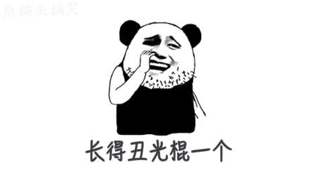 搞笑熊猫头单身吐槽曲《单身情歌》唱的也太真实了,听后真扎心