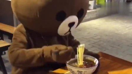 网红熊太能吃了,刚找到的新工作,就被她给吃没了!