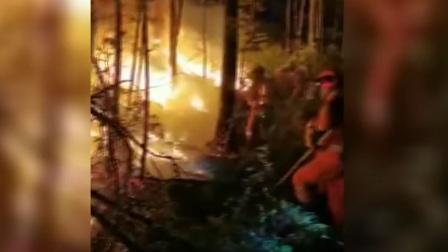 您早 2019 内蒙古大兴安岭金河林场火灾 对火场全面出击 4000余人扑火