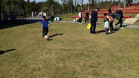 【7岁】10-27哈哈跟爷爷爸爸一起在闵行郊野公园踢足球video_102535
