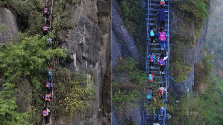 悬崖村获得6亿资助,却仅仅修了一条铁梯子,钱都去哪里了?