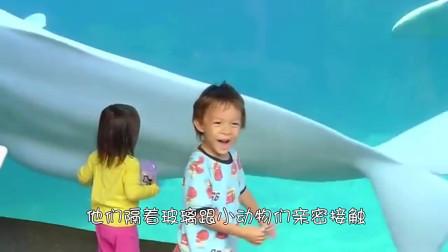 白鲸恶作剧向小男孩吐水男孩的反应太可爱了