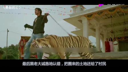 男子力大无穷,徒手驯服一只老虎,成为他的守护神