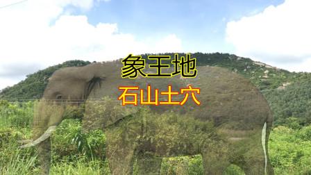 据说被超级富豪看中的象王地,石山土穴真的是封王拜相的福地吗?