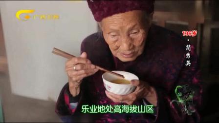 百岁奶奶养身有道,饮酒有方,总量控制绝不贪杯