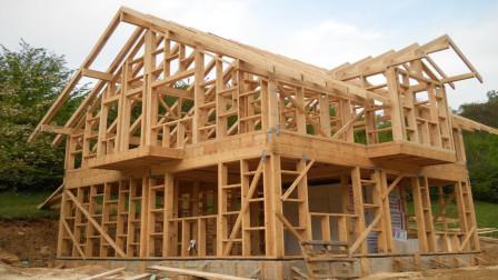 用木头来建造别墅,一般用的都是什么树木的木?今天算长见识了