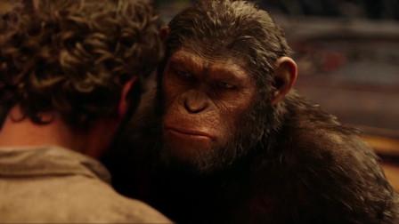 5分钟回顾《猩球大战2》猩猩挑起与人类的战争,最后伤无数