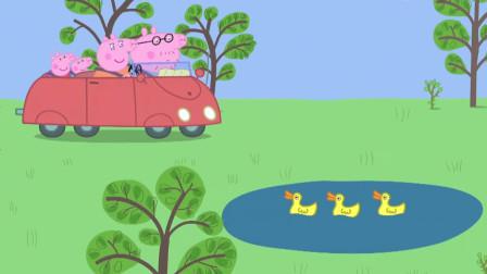 小猪佩奇:热心的乔治,救助了马路中间的小鸭子,还带它去吃东西