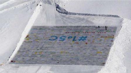 世界上最大的明信片,获得吉尼斯世界纪录,背后的故事很浪漫!