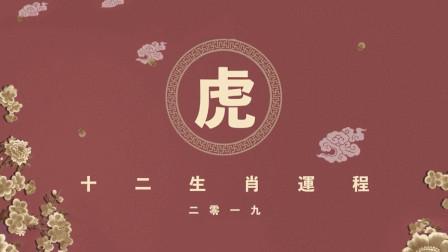 索南易学:2019己亥猪年十二生肖之寅虎运势