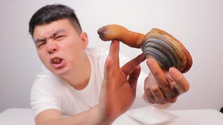 """试吃""""象拔蚌刺身"""",这长相也太夸张了吧,结果味道超好吃"""