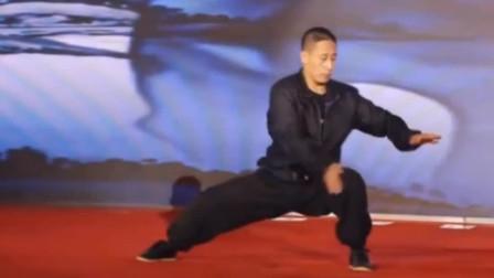 太极拳名家陈自强现场表演,寸劲太强了,看着很厉害的样子!