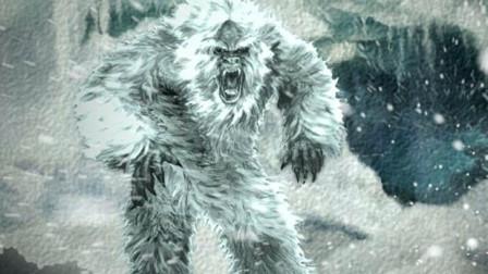 喜马拉雅神秘大脚雪怪是虚构的吗?