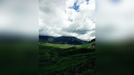 恰克拉格牧场/阿克苏地区温宿县