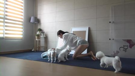 【Vlog】BJ徐雅和狗一天真实的生活