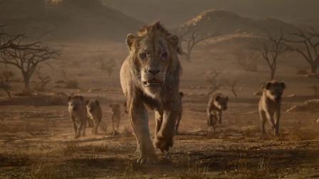 《狮子王》磅礴重现辛巴成王之路!