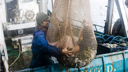 渔夫意外捕到一条美人鱼,带回家和她结了婚,从此幸福生活在一起!