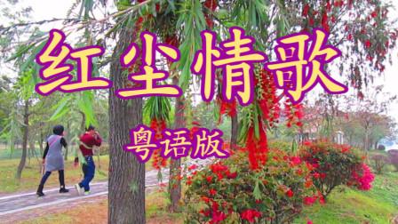 粤语版本的《红尘情歌》