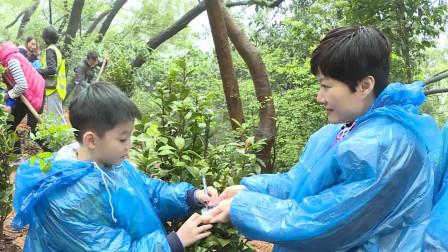 嗨!小喇叭  20190312 腾讯网友植树节活动报道