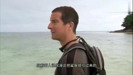 荒野求生:贝爷想吃顿好的,去浅水滩捉鲨鱼,会成功吗