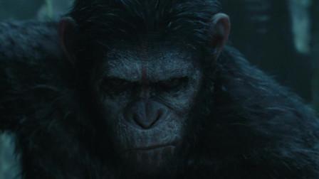 猩球崛起2:黎明之战:凯撒带领黑猩猩出击!!谁在附近?雷雨中的双眼,