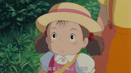 龙猫:小女孩找不到大猫,被爸爸和姐姐笑话了!