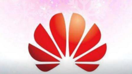 华为宣布金卡权益,在7月1日可享受这些福利,网友:厉害!