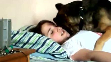 外國美女和調皮狗狗的日常生活
