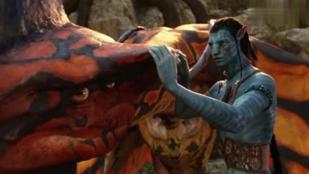 《阿凡达》: 历史上仅有六位勇士收服过霸王飞龙, 纳威人的图腾!