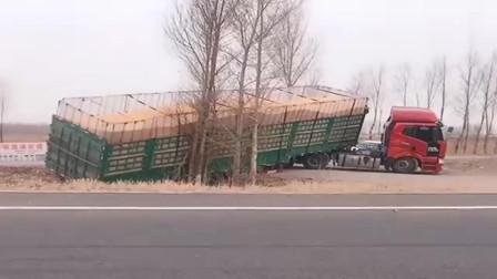 拉80吨粮食还跑这么快,幸亏这几棵树结实,不然后果不堪设想