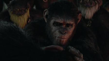 猩球崛起2:他来到母猩猩的身边,没想到是小猩猩要出生了!