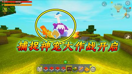 迷你世界神奇宝贝3:捕捉神兽大作战,平民神兽洛奇亚和凤王