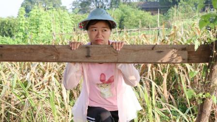 当农民可笑吗?种地姑娘自编这首《别看不起农村娃》听得感慨万千