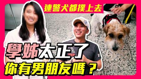 《预告片》警察学姐太漂亮了!緝毒犬也能这么可愛吗!