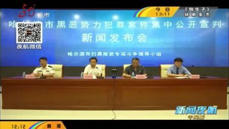 哈尔滨市扫黑除恶专项斗争领导小组召开新闻发布会