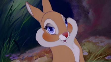 小鹿斑比 小兔子前一秒说着谈什么恋爱,后一秒就打脸了