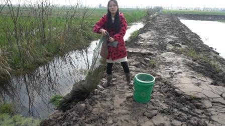 农村美女野沟里下地笼 看她收获了什么 一脸满足