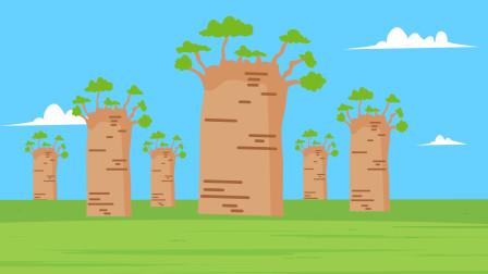 猴面包树是什么树?