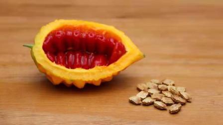 颜色金黄的癞葡萄,吃起来味道还是甜的!