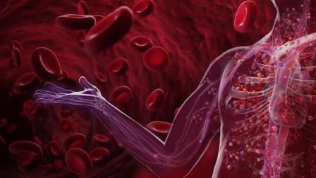 世界上最珍贵的_稀有血液_,比熊猫血还万能,全球仅有34个人拥有!