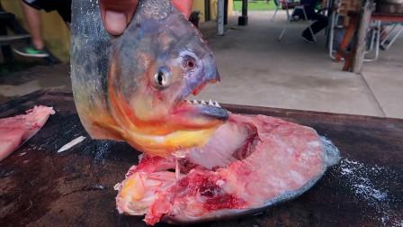 真正的吃货,就是连食人鱼都敢下口,吃起来是什么味道?