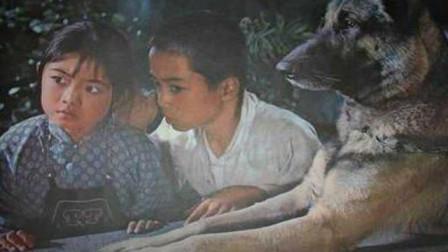 怀旧影视金曲  1982年老电影《赛虎》插曲《山里的孩子爱春天》难忘的童年经典
