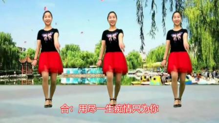 情歌对唱《一生痴情只为你》广场舞版,词曲歌舞配合默契!