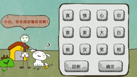解谜游戏:小伙家里养了一条小白狗,如何猜出成语?