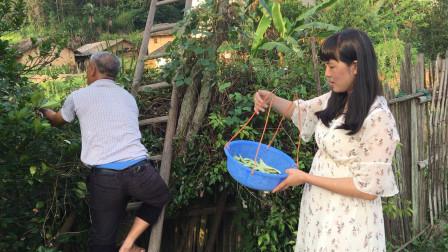 城里的姑娘嫁到广西农村,不用买菜路边随便摘,这样的生活你愿意嫁过来吗?