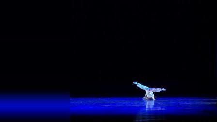 舞之窗古典舞男子独舞《觉了》桃李杯舞蹈剧目