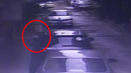 深圳一男子蹲在路边打电话 楼上突然掉下一只狗