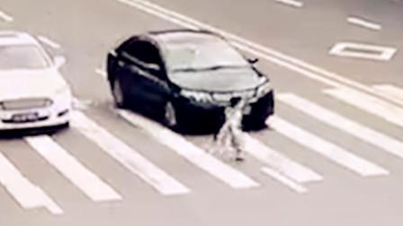 【重庆】过斑马线不观察不减速 轿车将小女孩撞倒
